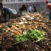 Waste Composting Facts That You Should Know
