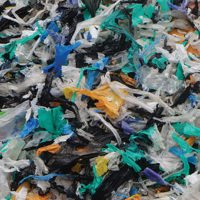 ploythene waste needs to be managed