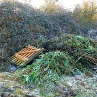 Vital Factors To Consider When Clearing Out The Garden Waste Before Summer Season Comes